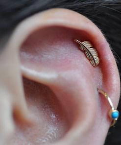 Earlobe/Cartilage